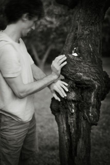 yoga degl alberi