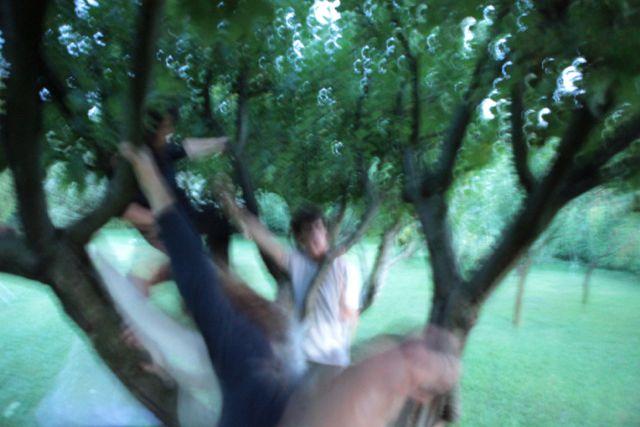 yoga degli alberi