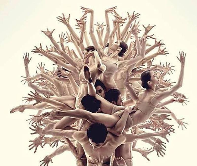 Women Tree – L'albero delle donne