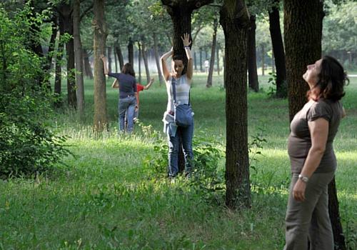 Yoga degli alberi il 4 Giugno a Treviglio (BG)
