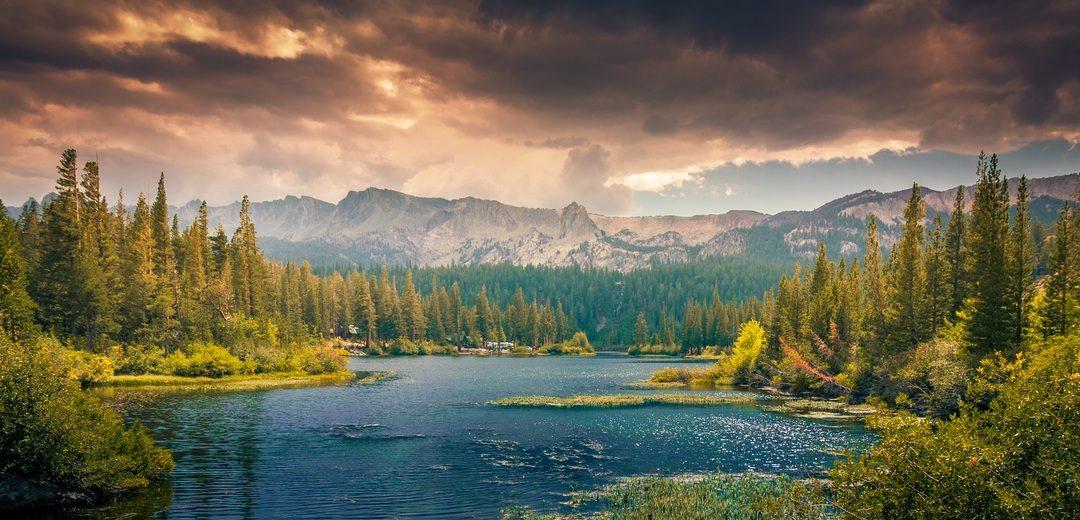 Nature connected business: la quinta rivoluzione industriale