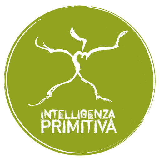 Intelligenza Primitiva