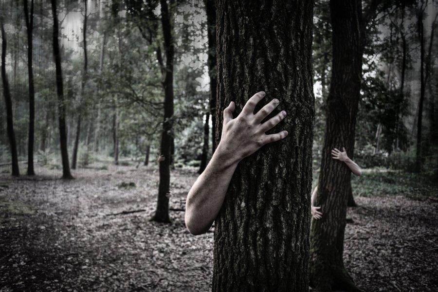 Immagine con un uomo che abbraccia un albero
