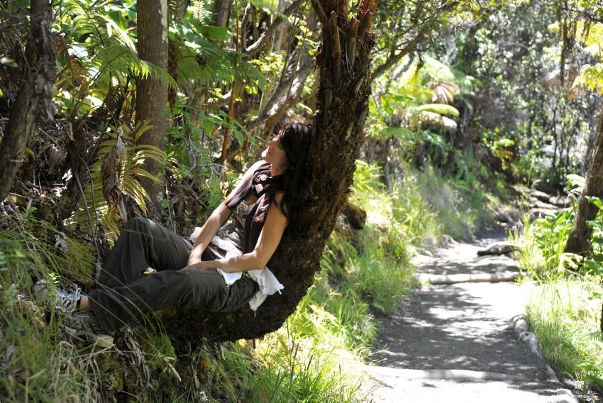 diana-tedoldi-albero-hawaii